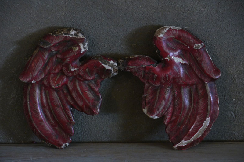 Painted Angel Wings
